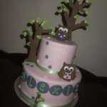 Alexis cute owl cake