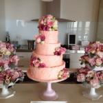Anatasia's cake