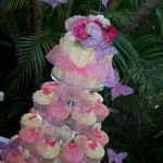 Bels Butterflies Cupcakes