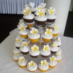 Big Yellow fragipannis cupcakes