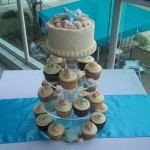 Cupcakes with shells with a touch of aqua