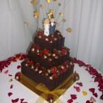 Gareth & Priscillas Cake