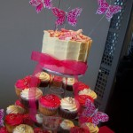 Hot Pink Butterfly cupcakes