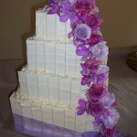 Lilac love 1