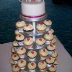 Marnies hot pink cupcakes