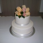 Peach and Apricot roses