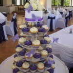 Purple & Silver butterfly cupcakes