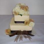 Shenoa's Cake