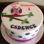 cadence cute owl cake
