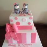 charli & Chloe Christening cake