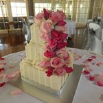 tn_Cascading hot pink and mid pink roses