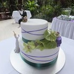 tn_Green and purple criss cross ribbon with fishing cake topper